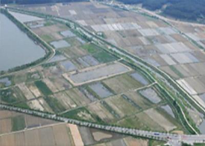 2000년대 : 습지복원사업 착공 전